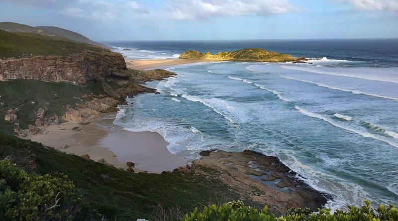 Südafrika 1571- Robberg Nature Reserve