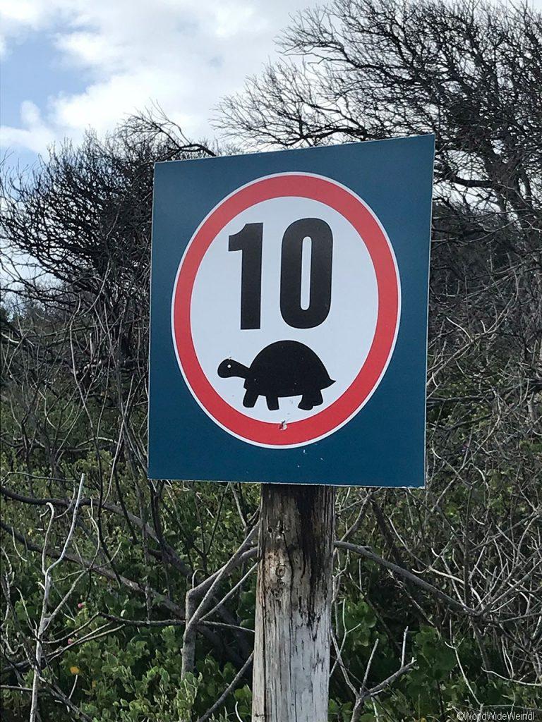 Südafrika 1560- Robberg Nature Reserve