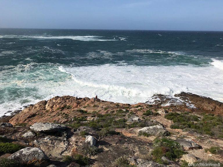 Südafrika 1562b- Robberg Nature Reserve