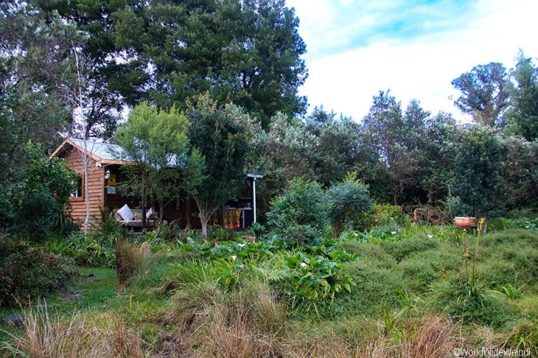 Südafrika 1319- Pear Tree Cottage im Storm River Valley