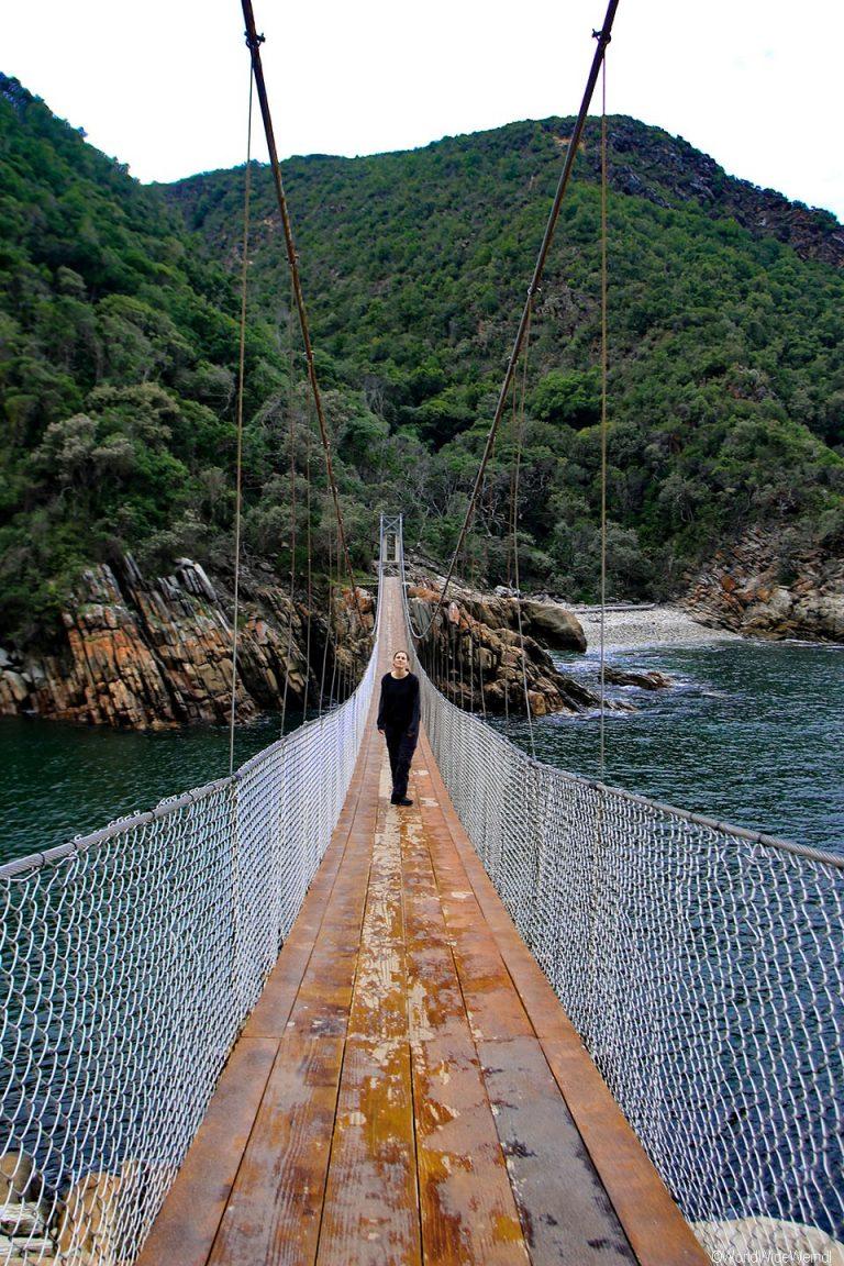 Südafrika 1355- Tsitsikamma National Park Suspension Bridge-2
