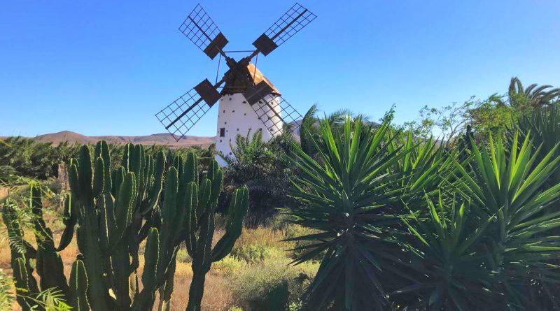 Fuerteventura 3855- El Cotillo 3