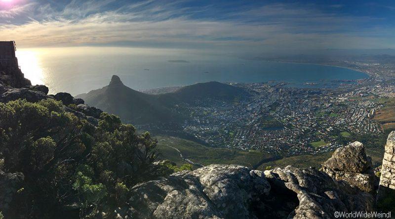Südafrika 26 -Tafelberg