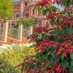 Spanien, Teneriffa_250_La Orotava