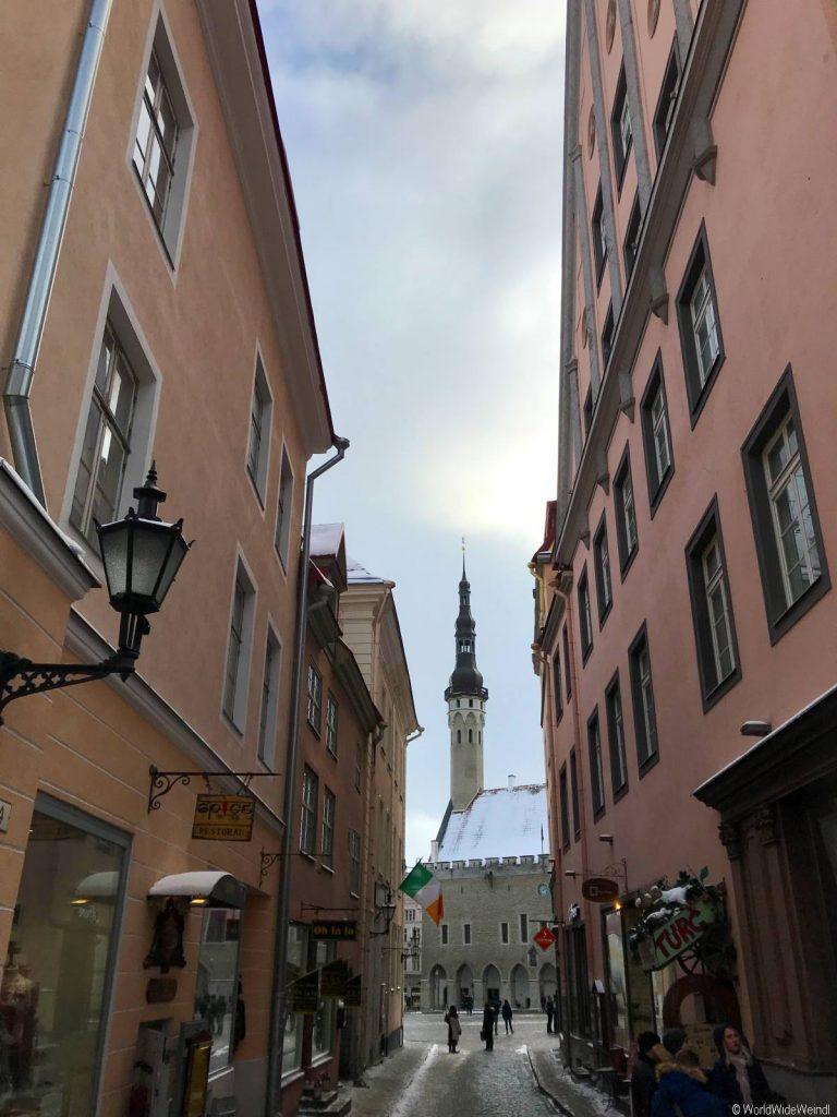 Tallinn 80- Rathaus